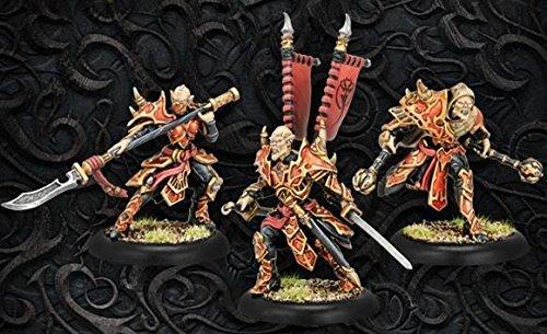 (Privateer Press Legends of Halaak Praetorian Character Unit)