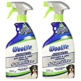 Best Cat Urine Removers - Bissell Woolite Advanced Pet Stain & Odor Remover Review