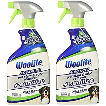 Amazon Com Woolite Pet Stain Amp Odor Remover Carpet