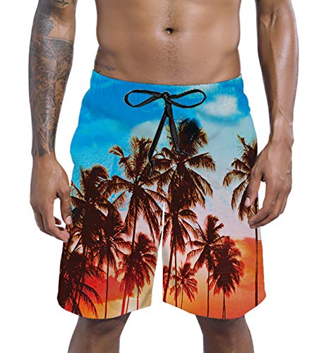 (RAISEVERN Mens Big & Tall Swim Trunks Tropical Hawaiian Scenery Beachwear Surfing Board Shorts Bathing Suits for Men Male Boy Quick Dry Swim Shorts with Mesh Lining,Medium,Hawaiian Scenery)