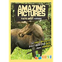 Amazing Pictures and Facts About Moose: The Most Amazing Fact Book for Kids About Moose