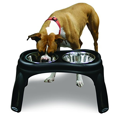 OurPets Elevated Raised Dog Bowls Feeding Station  sc 1 st  The Happy Pooch & Best Elevated Dog Food Bowls: 5 High Quality Products Reviewed in 2018