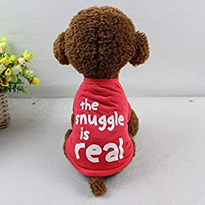 WEUIE Clearance Sale! Puppy Clothes Dog Pet Spring Summer The Angel Vest Sleeveless T-Shirts Clothes (S, Red)