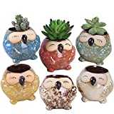 Rose Create 6 Pcs 3 inches Owl Pots, Little Ceramic Succulent Owl Planters with Drainage Holes - (Big Smile Owls)