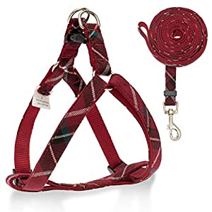 SCIROKKO No Pull Dog Harness and Leash Set – Adjustable Plaid Step in Puppy Basic Harness for Small Medium Dogs Cats