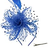 Kyпить DRESHOW Feather Mesh Fascinators Hat Flower Ribbons with Headband Forked Clip Cocktail Tea Party Headwear for Girls and Women на Amazon.com