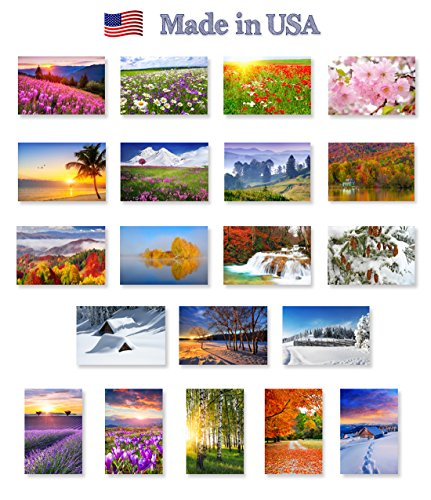 - FOUR SEASONS postcard set of 20. Post card variety pack of seasonal nature views: spring, summer, autumn and winter (5 cards of each season) postcards. Made in USA.