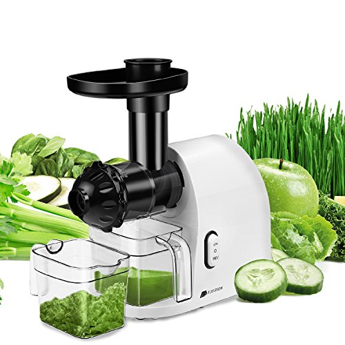 Flexzion Slow Masticating Juicer Machine - Household for sale  Delivered anywhere in USA
