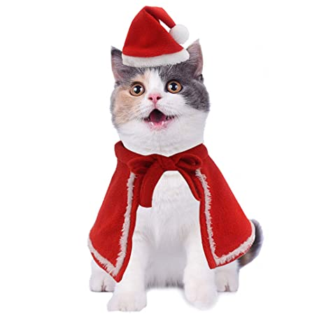 Image Unavailable - Amazon.com : JIATECCO Christmas Cat Costume- Santa Hat Cloak Set