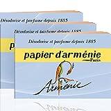 Annee Armenie Burning Papers 3 x 12 shee