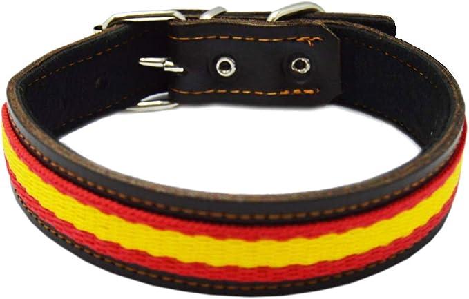LGP - Collar para Perros de Piel Flor con Bandera de España. 2,5 x 43 cm, Marrón: Amazon.es: Productos para mascotas