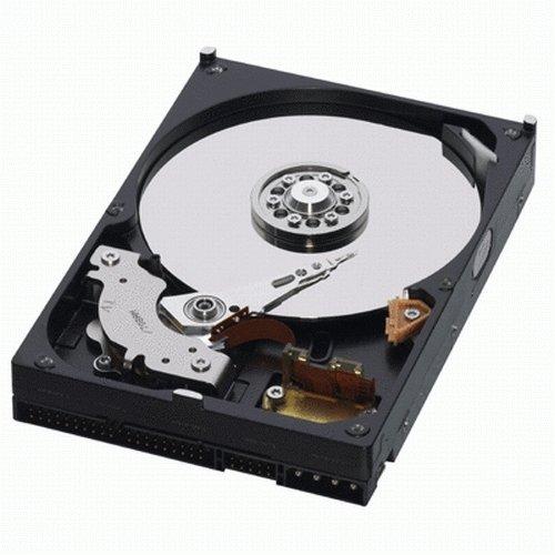WD  500 GB Caviar Blue 100 Mb/s 7200 RPM 16 MB Cache Bulk/OEM Desktop Hard Drive – WD5000AAKB