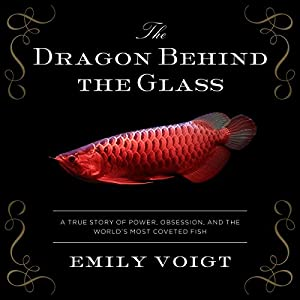 The Dragon Behind the Glass Audiobook