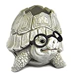 Roman Woodland Critters with Eye Glasses Novelty Planters (Turtle),One Size For Sale