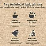 BANDOLERO-100-capsule-compostabili-Nespresso-caffe-Intenso-Bio-cialde-compatibili-Nespresso-Made-in-Italy-cialde-compostabili-capsule-compatibili-Nespresso-in-confezione-salvafreschezza