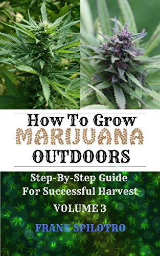 HOW TO GROW MARIJUANA OUTDOORS: Step-By-Step Guide for Successful Harvest