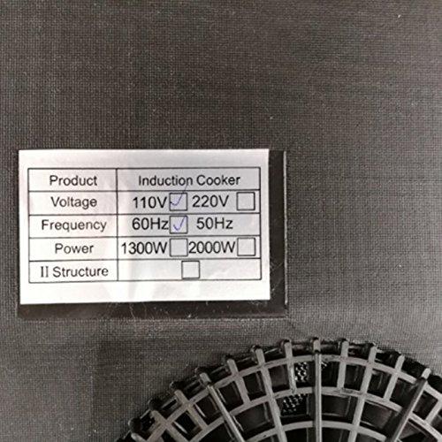Amazon.com: Denshine inducción, inducción placa caliente ...