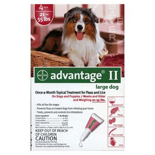 bayer-advantage-ii-large-dogs-21-to-55-pound-4-month