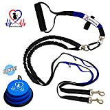 Pet Fit For Life Light Weight 64'' Premium Dual Dog Leash With Comfortable Soft Grip Foam Rubber Handle And Integrated ''Shock Absorbing Bungee'' + Bonus Water Bowl for Small to Medium Dogs