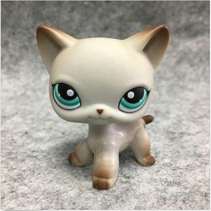 Amazon.com: Littlest Pet Shop Orignial Egyptian Gray ...