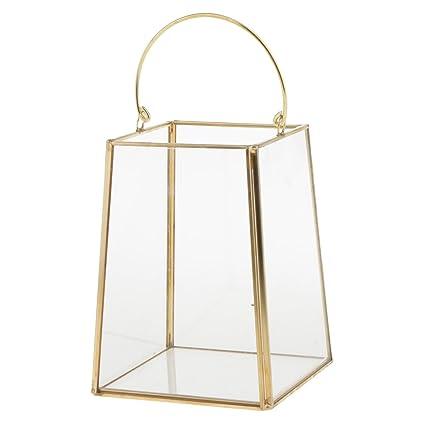 Amazon Com Homyl Vintage Clear Glass Terrarium Box Succulent Plant