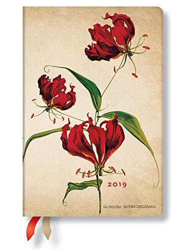 (2019 Mother Mini - Paperblanks Daily Planner (4 x 5.5 Day Per Page) (Gloriosa Lily))