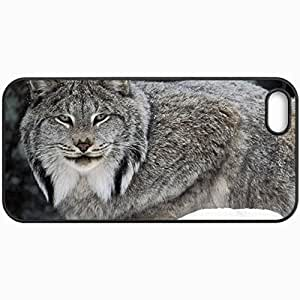 Customized Cellphone Case Back Cover For iPhone 5 5S, Protective Hardshell Case Personalized Canadian Lynx Birds Black