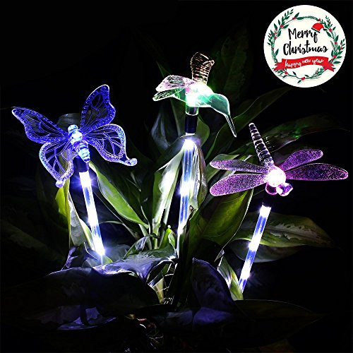 Solar Accent Lighting Dragonfly in Florida - 5
