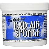 Bad Air Sponge 2lb. Container