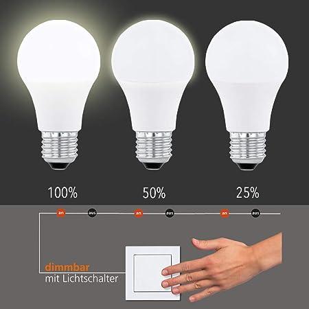 Light Bulb E27 Led Bulb 10 W 806 Lumen 3000 K Dimmer 100 50