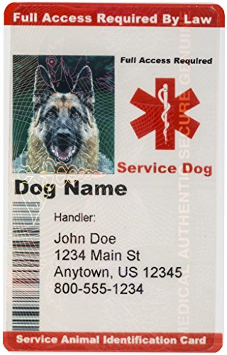 Personalized Service Dog ID Custom Identification Card for Service Animal Badge - Red (With Hologram)... (Custom Service Dog Id Card compare prices)