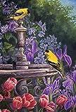 Best Home-X Bird Houses - Toland Home Garden Gold Finch Birdbath 28 x Review