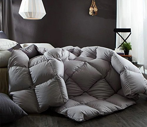 Natural Goose Down Bedroom Comforter Duvet Insert 100% Organic Cotton 800TC 850 Filling Power£¬Medium Warmth All Season,Gray
