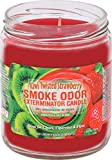 Smoke Odor Exterminator 13 oz Jar Candles, Kiwi Twisted Strawberry, Pack of 2