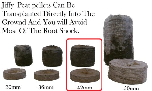 100-jiffy-7-peat-pellets-42mm-seeds-starting-jiffy-peat-pellet-helps-to-avoid-root-shock-100-jiffy-p