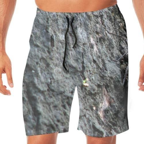 スウェットショートパンツ メンズ 短パン ハーフパンツ 春 夏 膝上 スポーツ サーフ 動物フクロウ