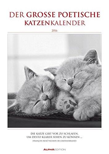 Der große poetische Katzenkalender 2016 - Literarischer Bildkalender A3 - mit Zitaten - schwarz/weiß - Tierkalender