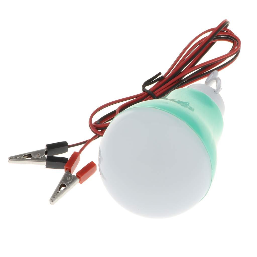B Blesiya Glühbirne Ersatzlampe Stirlingmotor Ersatzteile für Jede Modell Maschine