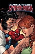 Marvel Knights Spider-Man Volume 4: Wild Blue Yonder Tpb (Marvel Knight Spider-Man) (v. 4)