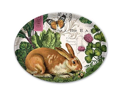 Michel Design Works Glass Soap Dish, Garden Bunny by Michel Design Works