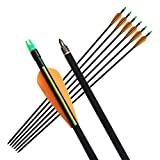 """6Pcs 33"""" Fiberglass Hunting Arrows with Replaceable Screw-in Field Point and Explosion Proof Tail Colorful 3 Fletches Target Practice Arrow for Compound and Recurve Bow"""