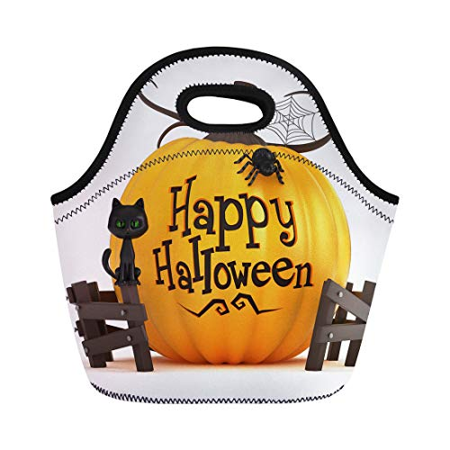 Semtomn Lunch Tote Bag Orange Happy 3D Render of Halloween Pumpkin Holiday Costume Reusable Neoprene Insulated Thermal Outdoor Picnic Lunchbox for Men -