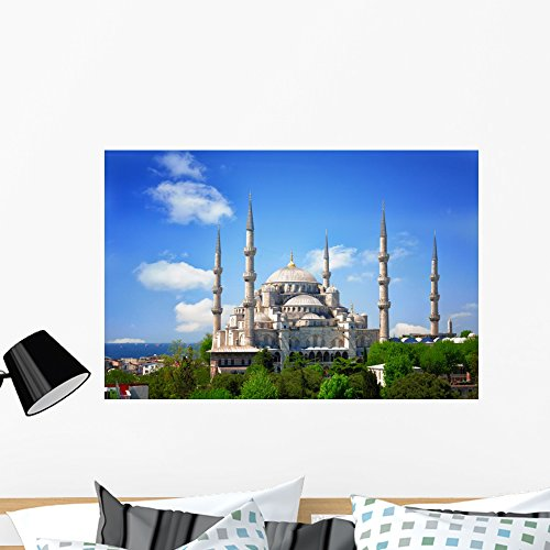 - Wallmonkeys Sultan Ahmed Mosque Blue Wall Mural Peel and Stick Graphic (36 in W x 24 in H) WM360814