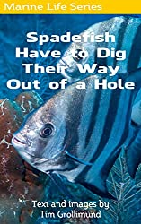 Spadefish Have to Dig Their Way Out of a Hole