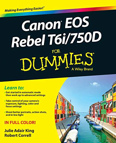 Canon EOS Rebel T6i / 750D For Dummies (For Dummies (Computer/tech)) (Best Non Canon Flash)