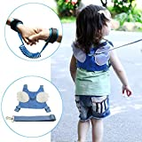 Rasie Baby Toddler Harness Walking Safety Child Strap,Anti-lost Harness & Anti Lost Wrist Link for Boys or Girls - 2 Pack