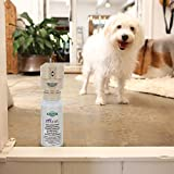 PetSafe SSSCAT Spray Replacement Can