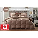 100% COTTON WHITE DOWN DUVET MADE IN CANADA Taupe