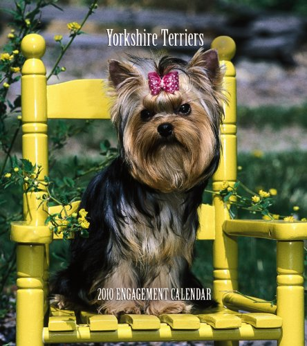 Yorkshire Terriers 2010 Hardcover Weekly Engagement