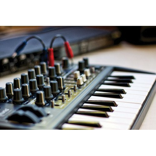 Arturia Microbrute 25-Note Mini Keyboard Analog Synthesizer and Accessory Bundle w/Stereo Headphones + Adapter + Cables by Photo Savings (Image #4)